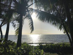Palm Cove – das unerwartete Paradies